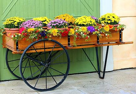 Flower cart container garden